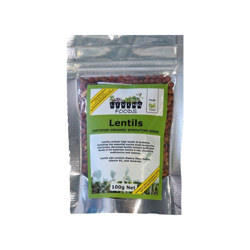 lentil 100g